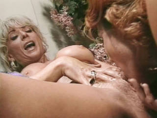 Nina Hartley The Best Ass In Porn Nina Hartley